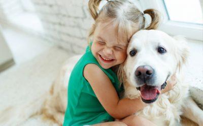 Eres mi amigo fiel: mascotas en casa